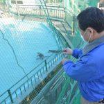 鳥インフル 動物園、水族館も厳戒 石灰散布や防鳥ネット 茨城、再開備え対策