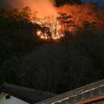 足利の山林火災 1日にも鎮圧宣言 住宅地近くで一時、炎も