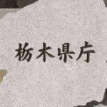 栃木県内 新たに41人感染 佐野市の高齢者施設でクラスター 2人が変異株 新型コロナ 3日発表