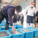 処理水放出決定 「説明足りない」 北茨城漁師ら反発 宿泊・飲食業者も困惑