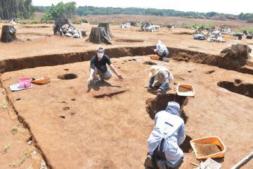 稲敷の山王原遺跡に竪穴住居 市職員も驚き 発掘調査で22棟発見、焼け跡も