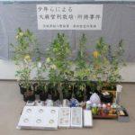 少年ら自宅で大麻栽培疑い 茨城県警逮捕