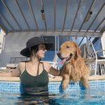 プール付きヴィラで愛犬と一緒に過ごせる「FINE GLAMPING Doggies Pool Villa」オープン…8月5日