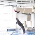 アクアワールド茨城県大洗水族館、「SUMMER AQUAWORLD 2021」を開催…7月10日~8月29日