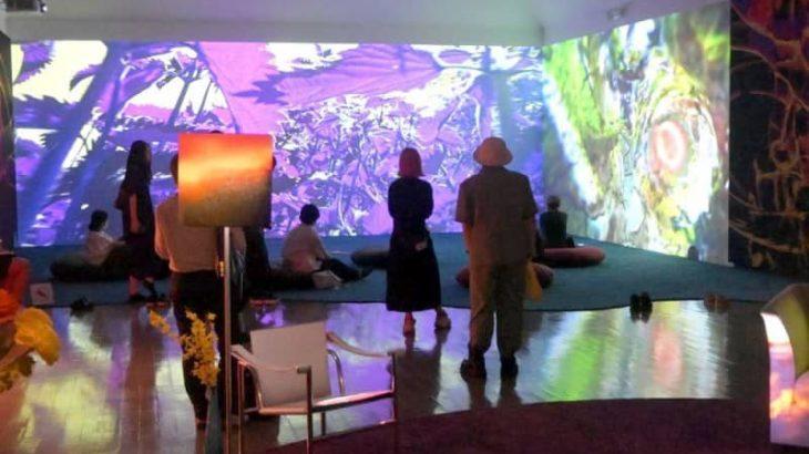 ピピロッティ・リスト展 横になって表現鑑賞 9月1日から水戸芸術館 主要作品38点