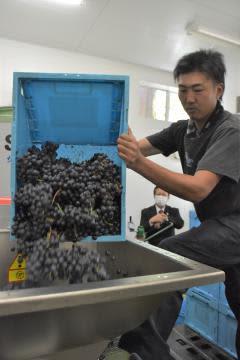 茨城・牛久シャトー 赤ワイン、醸造再開