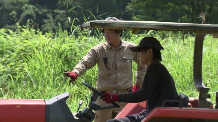 親子で耕作放棄地を再生 育てた酒米で日本酒造りへ…昭和村の魅力を世界に発信【福島発】