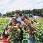 茨城・森ファーム人気No,1のピーナッツ畑のオーナー制度、2021年度の募集を開始!希少な国産ピーナッツの栽培を体験!