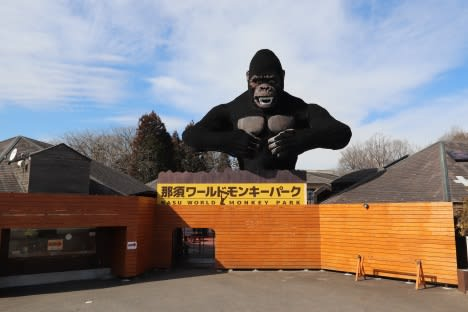 【11月】栃木近県&ワクチンパス優待【那須ワールドモンキーパーク】